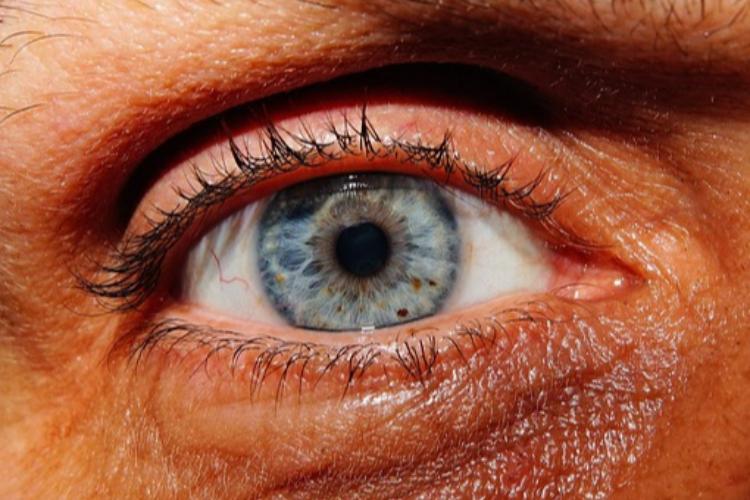 una-coalicion-internacional-de-investigadores-oculares-utiliza-ia-para-clasificar-los-25-tipos-mas-comunes-de-uveitis